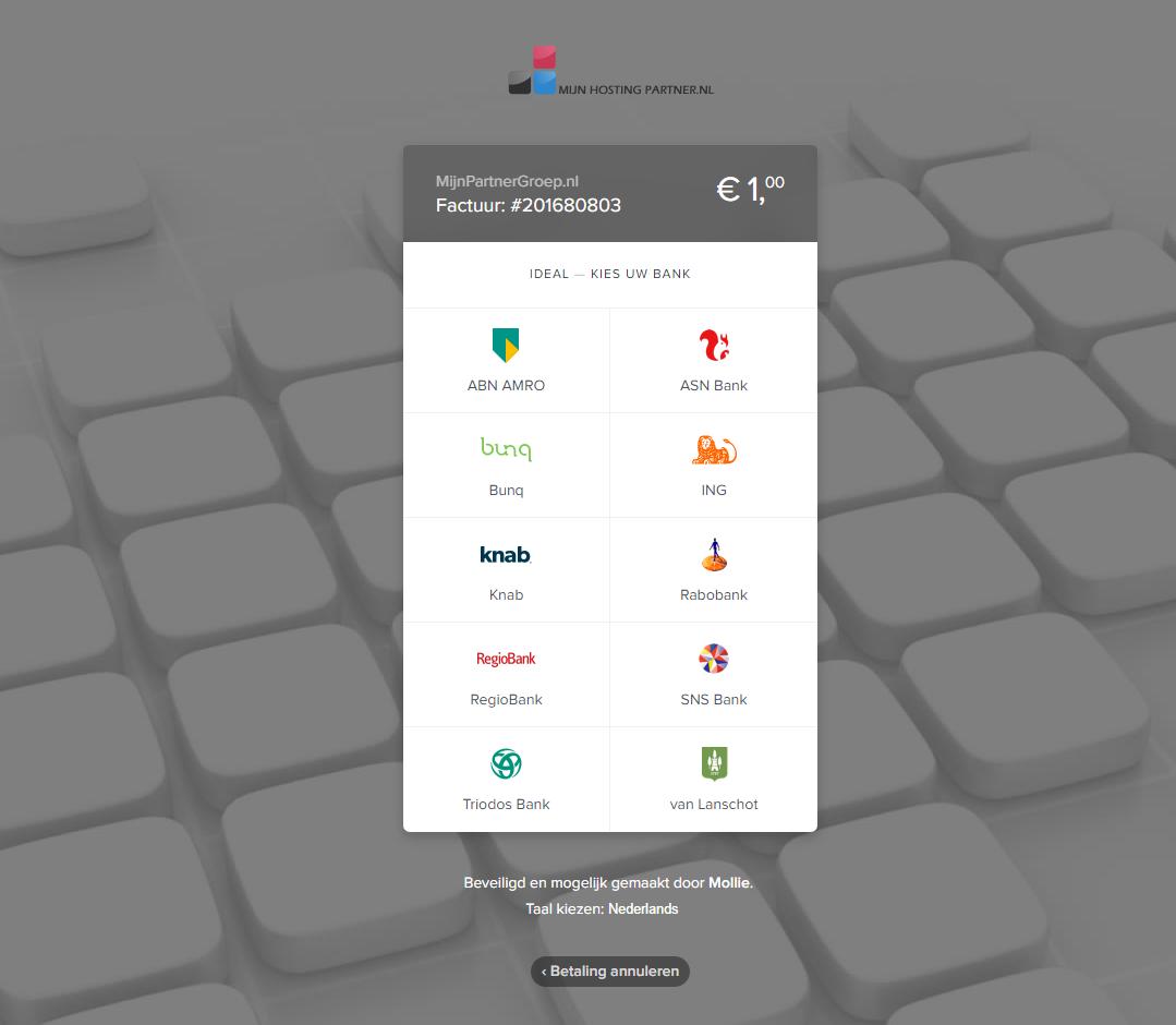 hoe betaal ik een webhosting factuur mijnhostingpartner.nl 5